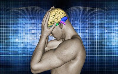 Chronic Pain = Less Brain